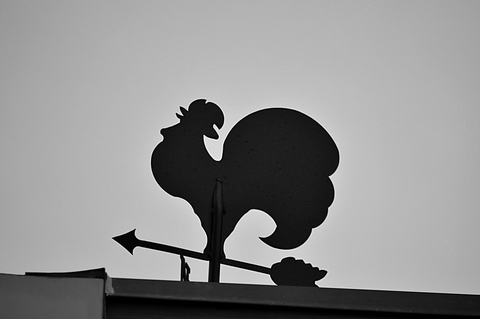 rooster-shaped weather vane