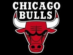 logo of Chicago Bulls