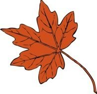 Maple Leaf Clip Art N2