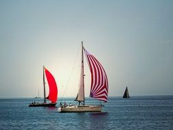 boats with red sails on the water