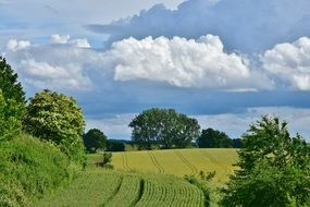 scenic landscape of arable fields