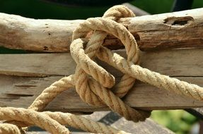 logs tied with rope