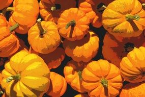 pile of round orange pumpkins at sun