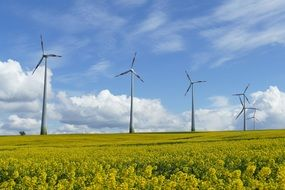 wind turbines on a sunny meadow