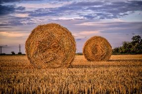 two round haystacks on an autumn field