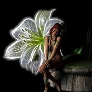 fantastic picture of a fairy near a white lily