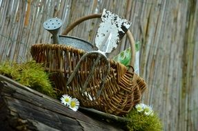 Garden tools in a basket