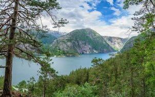 summer Norway Fjord Landscape
