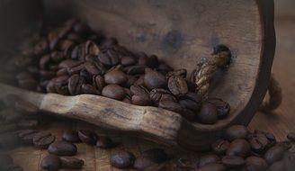 coffee beans on an old wooden spatula