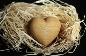 wooden heart in the nest