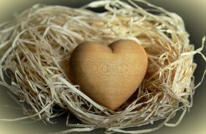 wooden heart lies on the wool