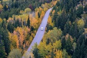 car rides along the highway along the autumn forest