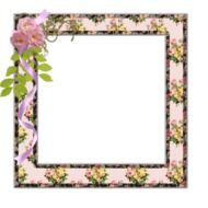 photo frame with pink roses