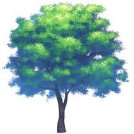 painted green tree on white background