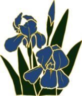 drawing of a blue iris with green leaves