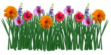 colorful Spring Flowers Grass drawing