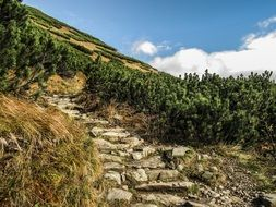 stone built path in mountains