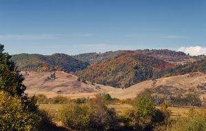 panoramic view of the picturesque autumn landscape on a sunny day