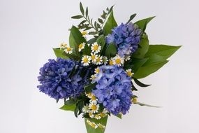 bouquet of white daisies and blue hyacinths