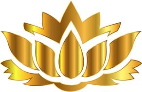 gold lotus on a white background