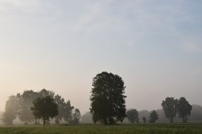 morning mist over the countryside
