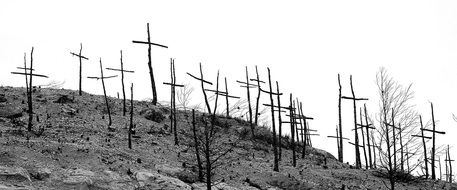 wooden crosses on a hill after a fire