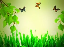 branches and Butterflies above Green grass, illustration, background