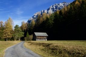 road among the autumn alps