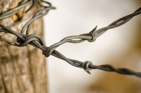 barbed wire as a fence