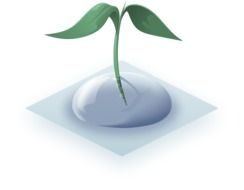 Plant in the water drop clipart