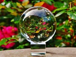 flower meadow behind a glass ball