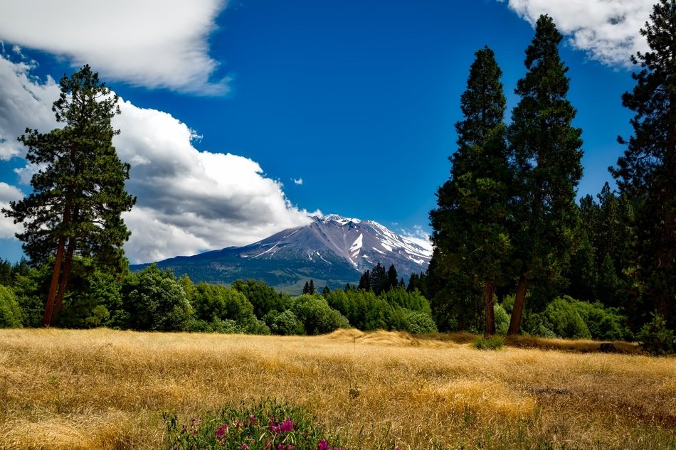 distant view of mount shasta in California