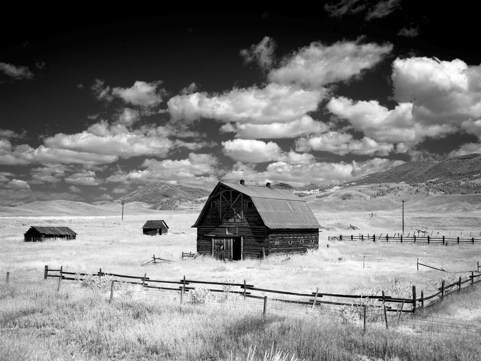 black and white photo of a barn on a field