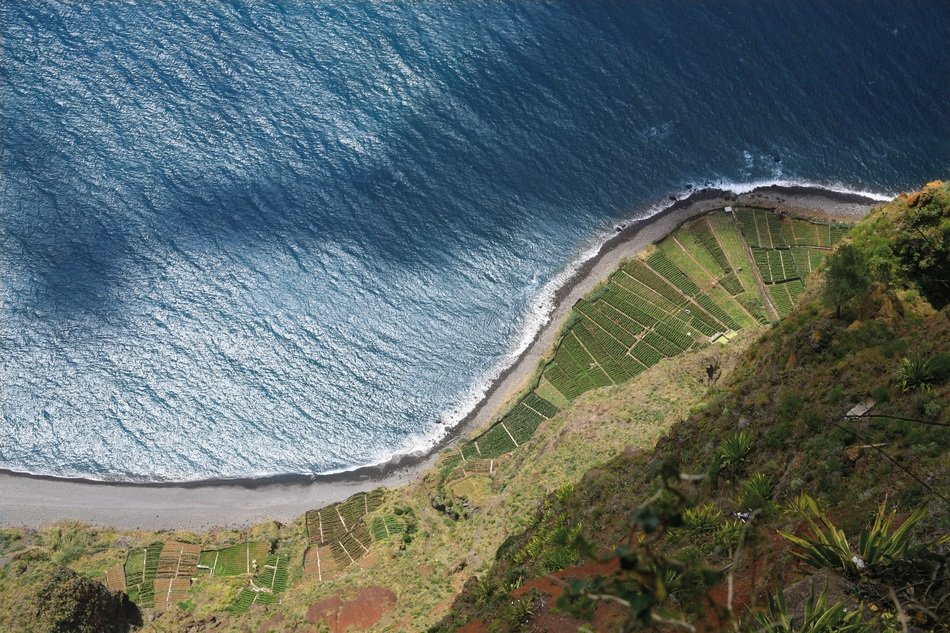 Aerial view of coast in Madeira