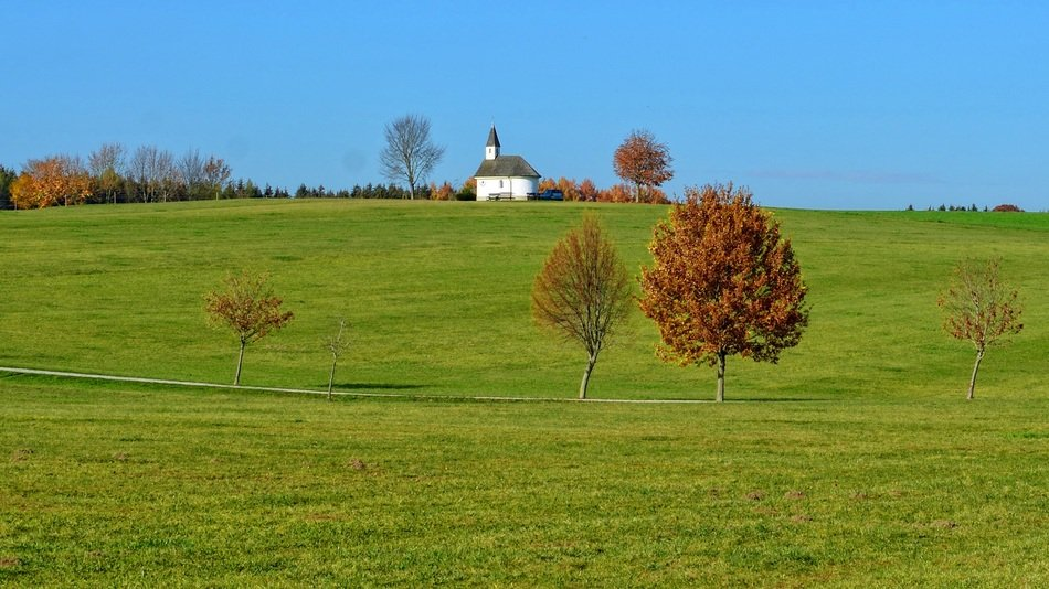 autumn trees among the green field with chapel on the hill in Bavaria