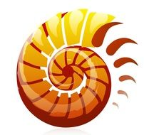 Shell Logo Design drawing
