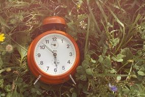 orange alarm clock in grass close up