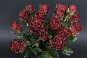 Red Roses Drip Bouquet