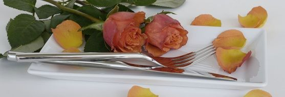 roses on the plate for mother's day