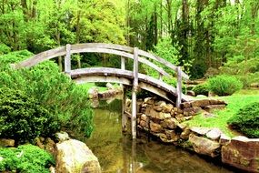 Bridge and Japanese garden