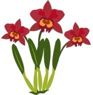 clip art of red orchids
