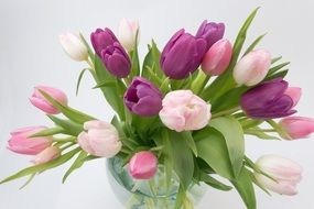 bouquet of colorful tulips in a glass vase