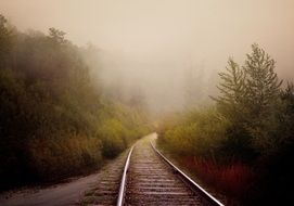 Old Rail Road through Forest in mist
