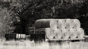 black and white photo of hay bales on a wagon