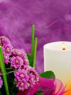 compositions of pink flowers near a white candle