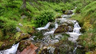 the flow of a mountain stream