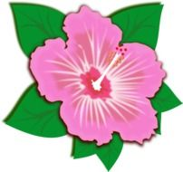 clip art of pink spring flower