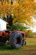tractor on a farm in autumn