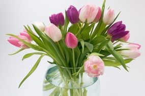 spring bouquet of colorful tulips