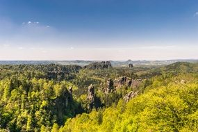 Distant View of rocks among forest, germany, Saxon Switzerland